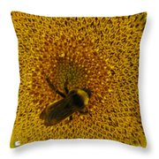 Harvesting The Sun Throw Pillow