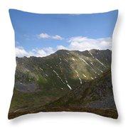 Hatcher Morning Throw Pillow