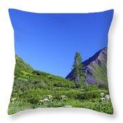 Hatcher Pass Alaska Throw Pillow