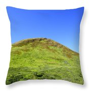 Hatcher Pass Throw Pillow
