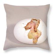 Hatching Chicken 8 Of 22 Throw Pillow