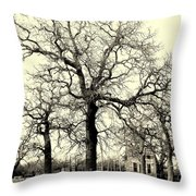 Haunted Homestead Throw Pillow