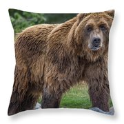 Having A Bad Fur Day Throw Pillow