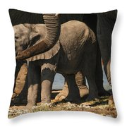 Having A Sip Throw Pillow