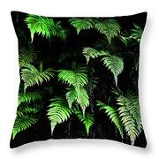 Hawaiian Fern Throw Pillow