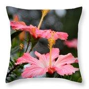 Hawaiian Pink Hibiscus Throw Pillow