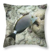 Hawaiian Tropical Fish P1060093 Throw Pillow
