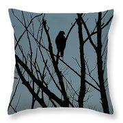 Hawk 4 Throw Pillow