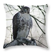Hawk 9 Throw Pillow