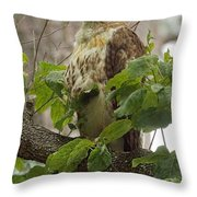 Hawk On Watch Throw Pillow