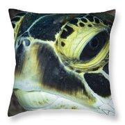 Hawksbill Sea Turtle Portrait Throw Pillow