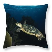 Hawksbill Sea Turtle Swimming Throw Pillow