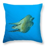 Hawksbill Turtle In The Diving Throw Pillow