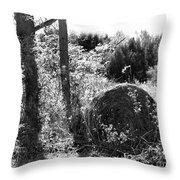 Hay Bail Throw Pillow
