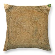 Hay Ball Throw Pillow