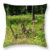 Hay Cutter 4 Throw Pillow