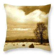 Hay Field Throw Pillow