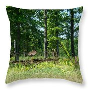 Hay Rake 1 Throw Pillow
