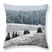 Hayden Valley Storm Throw Pillow