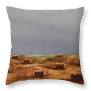 Hayfield Throw Pillow by Ruth Kamenev