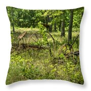 Hayrake And Cutter 2 Throw Pillow