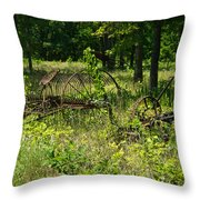 Hayrake And Cutter Throw Pillow