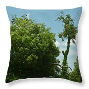 Hayrake In The Woods Throw Pillow