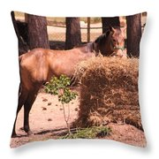 Hay's For Horses Throw Pillow