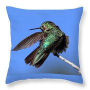 He Went That Way Throw Pillow
