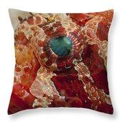 Head Detail Of A Red Dwarf Lionfish Throw Pillow