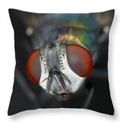 Head Of A Green Blow Fly Throw Pillow