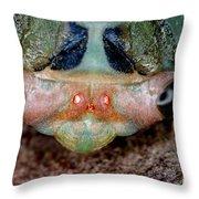 Head Of Cicada Throw Pillow