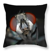 Head Of Green Blow Fly Throw Pillow