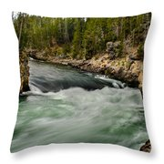 Heading For The Fall Throw Pillow