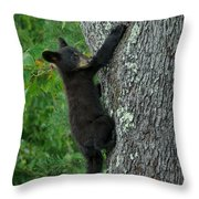 Heading For The Top Throw Pillow