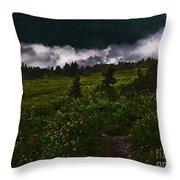 Heading Home Through The Meadow Throw Pillow