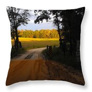 Heading To Sunlight Throw Pillow