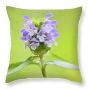 Heal-all Throw Pillow