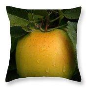 Healthy Glow Throw Pillow
