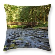 Hear The Rush Of Water II Throw Pillow