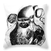 Heart Anatomy, Carl Von Rokitansky, 1875 Throw Pillow