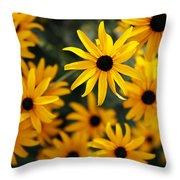 Heart Of Summer Throw Pillow