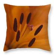 Heart Of The Lily Throw Pillow