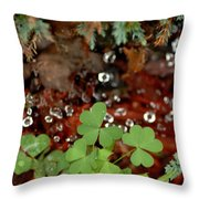 Heart Shaped Clover And  Dew Drops Throw Pillow