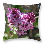 Heart Shaped Lilac Throw Pillow