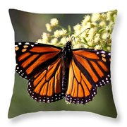 Heavenly Wings Throw Pillow