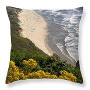 Heceta Beach View Throw Pillow