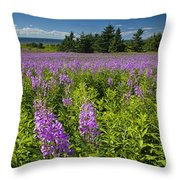 Hedge Woundwort Flower Blossoms And Field Throw Pillow
