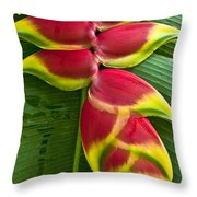Heliconia Rostrata II Throw Pillow