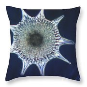 Heliodiscus Sp. Radiolarian Lm Throw Pillow